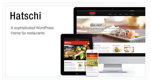 Hatschi best Wordpress Theme